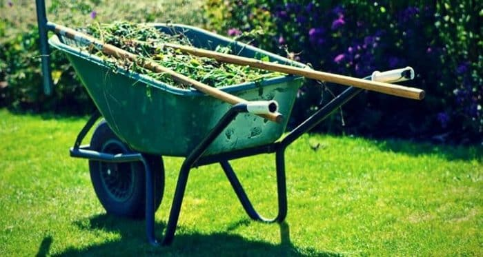 Best Plastic Wheelbarrow Reviews