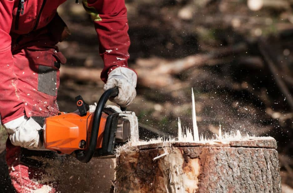 Remove a Stump Without Difficulty : The 4 Techniques