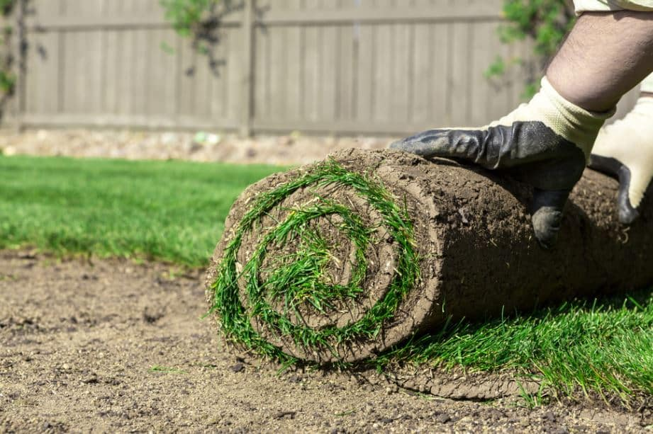 How to Make a Berm for Landscaping