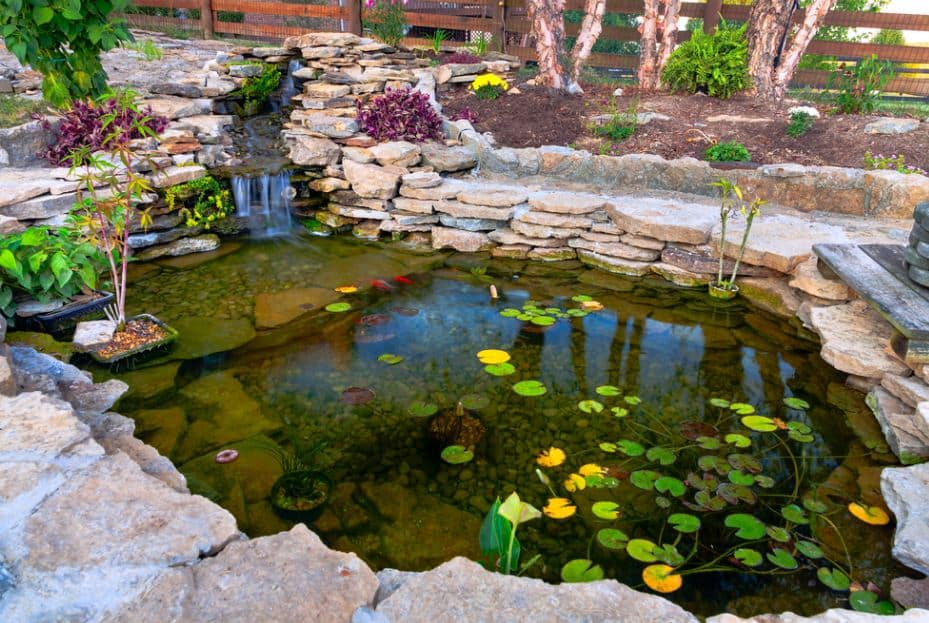 How to Make a Landscaping Plan