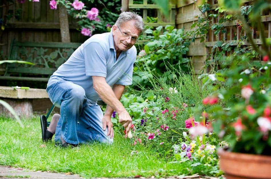 Health Benefits That Gardening Offers Seniors