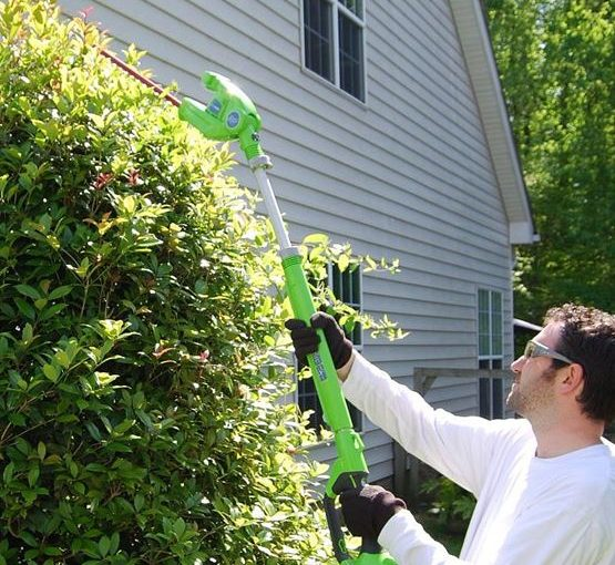 How To Trim Bushes With Hedge Trimmer