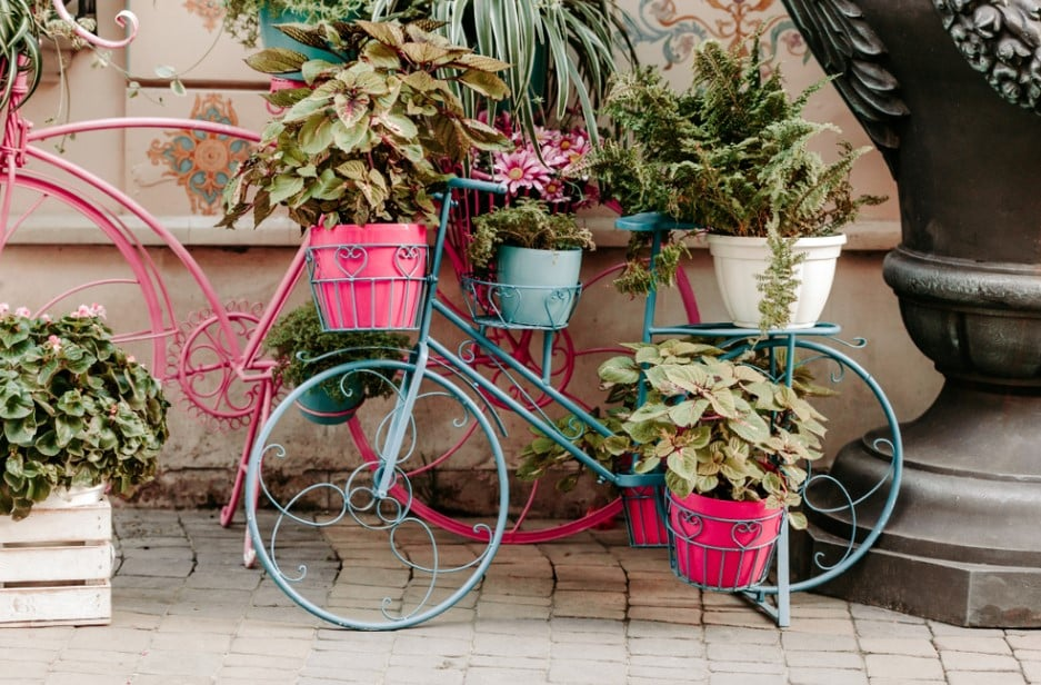 Best Plant Stands