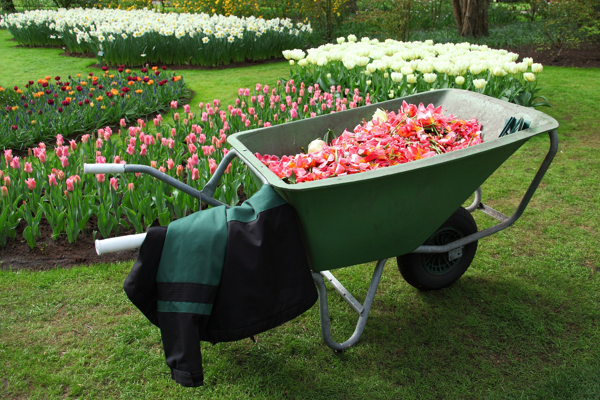Best Garden Wagon