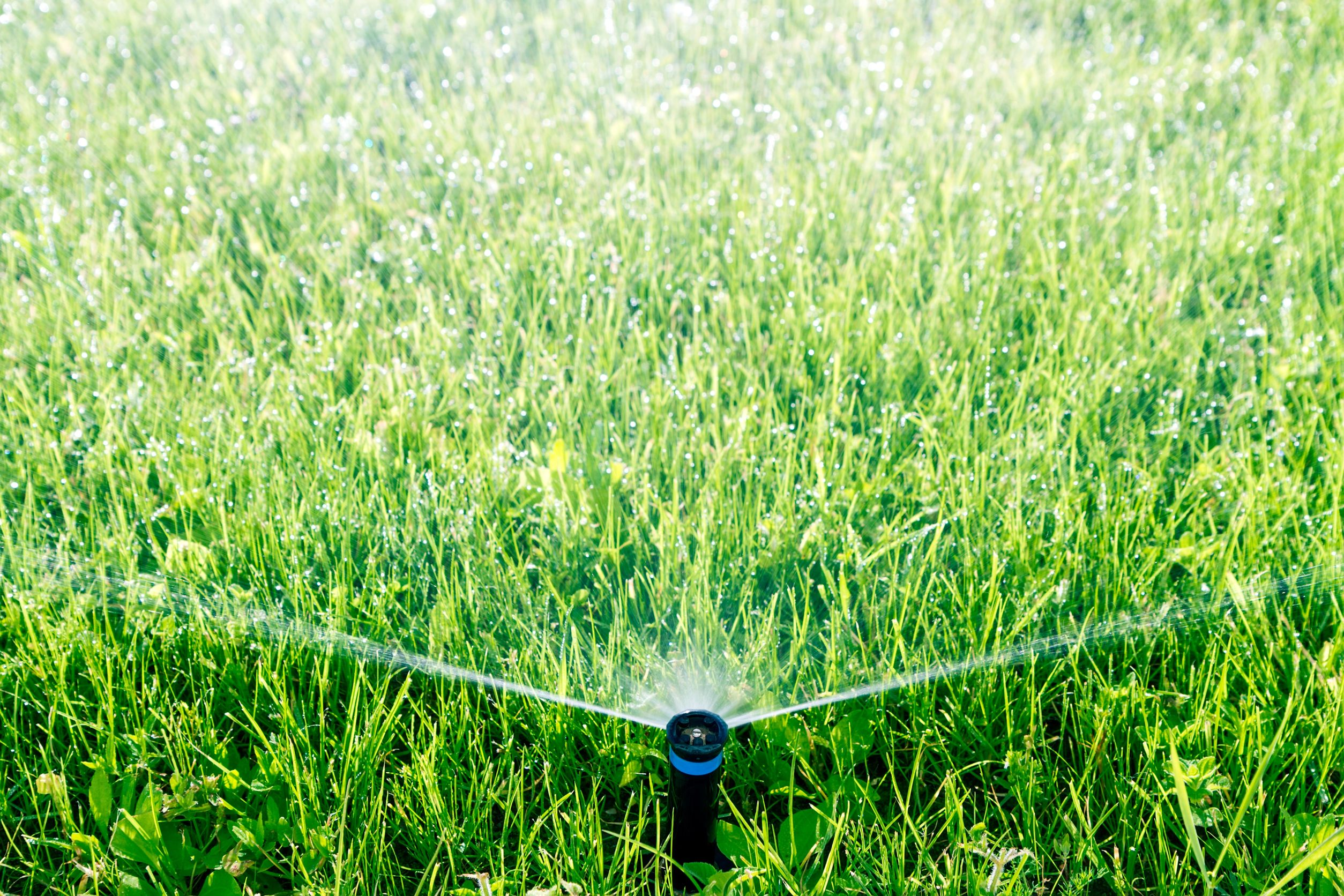 Winter Lawn Care Taking Care Of Your Grass In Cold