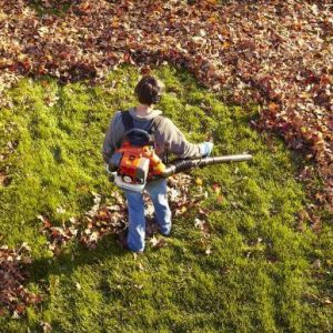 best-leaf-blowers-buying-guide-in-2017-2018/